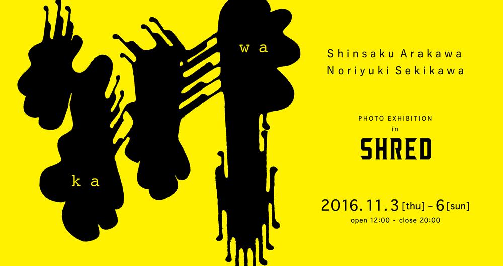shred_kawa_bn_1